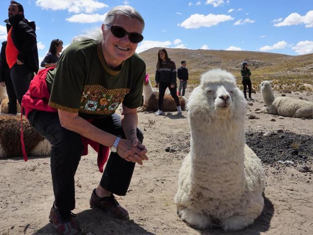 cc me with llama